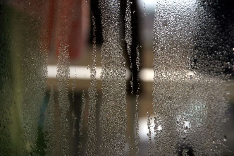 pest-control-cape-town-condensation-min