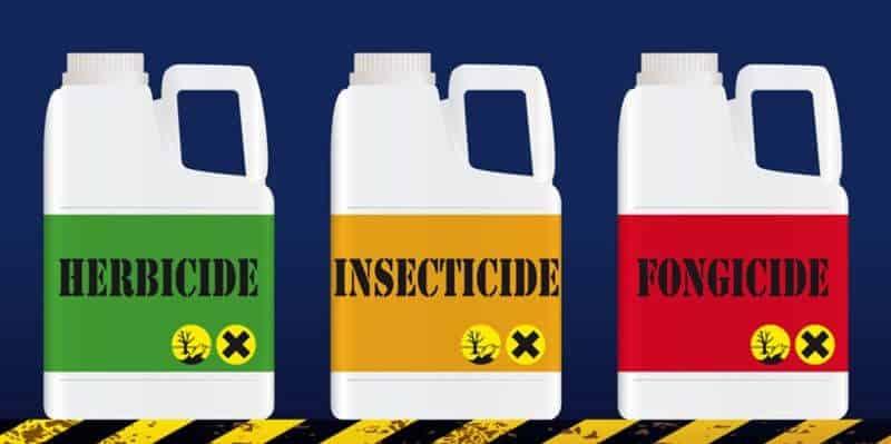 pest-control-cape-town-pesticides-min