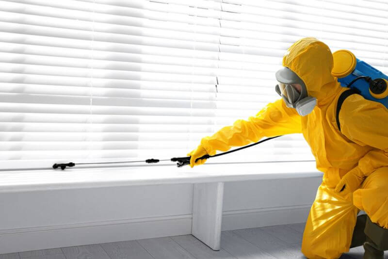 pest-control-cape-town-professional-company-min